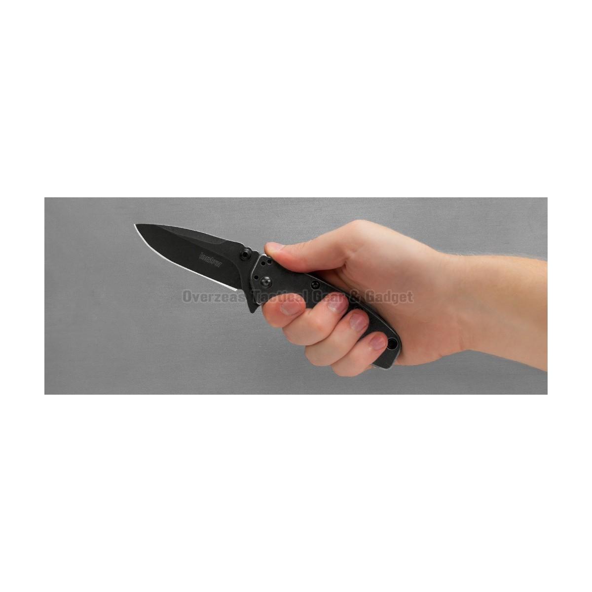 """มีดพับ Kershaw Cryo II Assisted Opening Knife (3.25"""" BlackWash) 1556BW"""